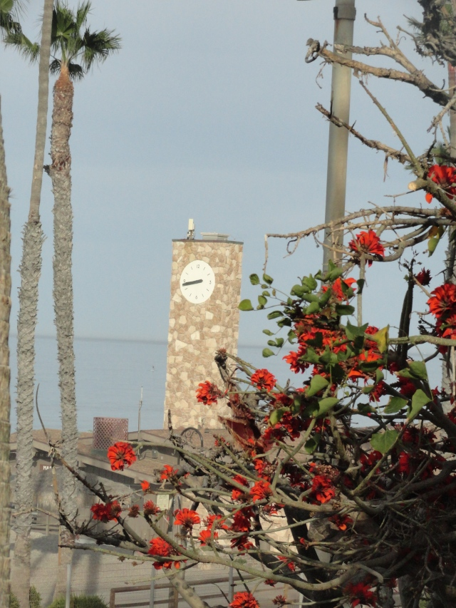 The morning of whale watching started with breakfast in San Clemente... where we saw this beautiful clock tower.